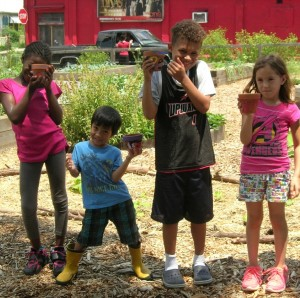 Edgewood Community Learning Garden