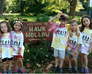 Hawk Hollow Sign
