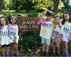 Hawk Hollow Sign